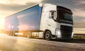 International freight Bologna